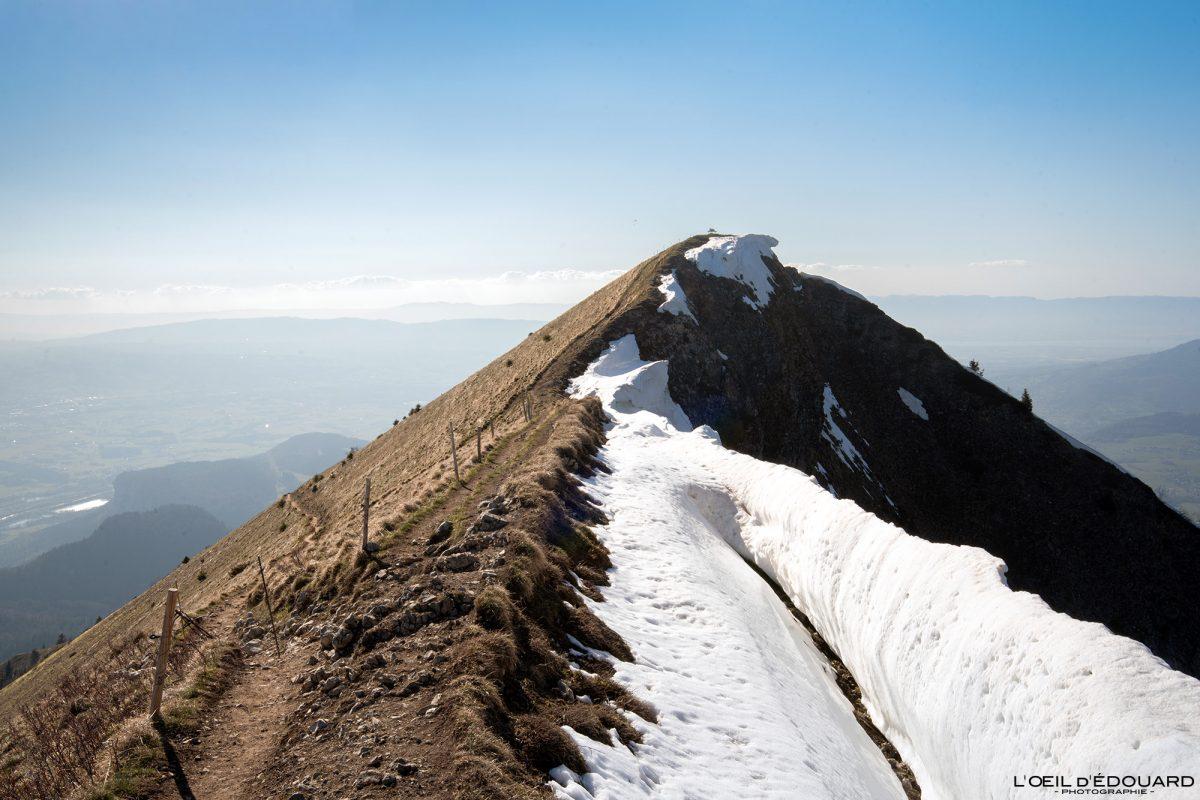 Sommet Le Môle Massif du Chablais Haute-Savoie Alpes France Randonnée Montagne Paysage Outdoor French Alps summit Mountain Landscape Hike Hiking