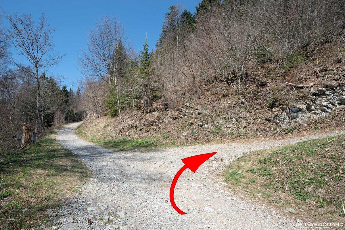 Itinéraire sentier de randonnée Le Môle Massif du Chablais Haute-Savoie Alpes France Montagne Outdoor French Alps Mountain Hike Hiking trail