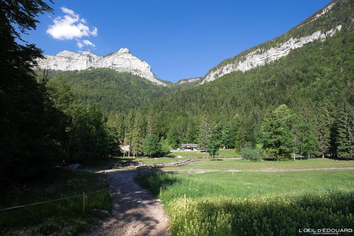 Pont de Drugey Cirque de Saint-Même Massif de la Chartreuse Savoie Isère Alpes France Randonnée Montagne Paysage Outdoor French Alps Mountain