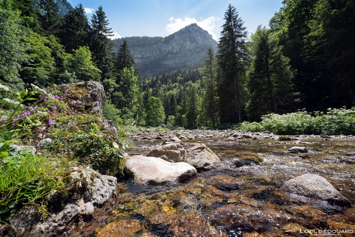 Le Guiers vif Cirque de Saint-Même Massif de la Chartreuse Savoie Isère Alpes France Randonnée Rivière Montagne Paysage Outdoor French Alps Mountain Landscpae River