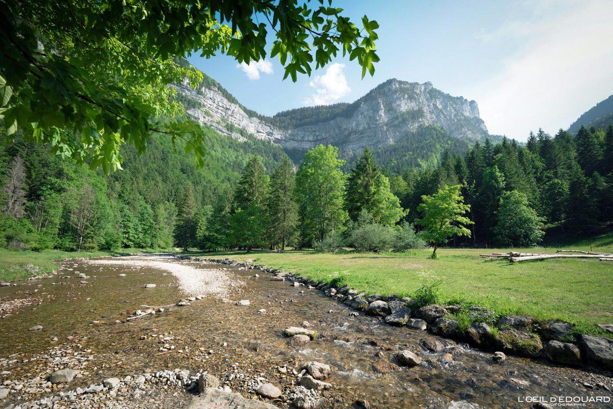 Pont de Drugey Cirque de Saint-Même Massif de la Chartreuse Savoie Alpes France Randonnée Rivière Montagne Paysage Outdoor French Alps Mountain Landscape River