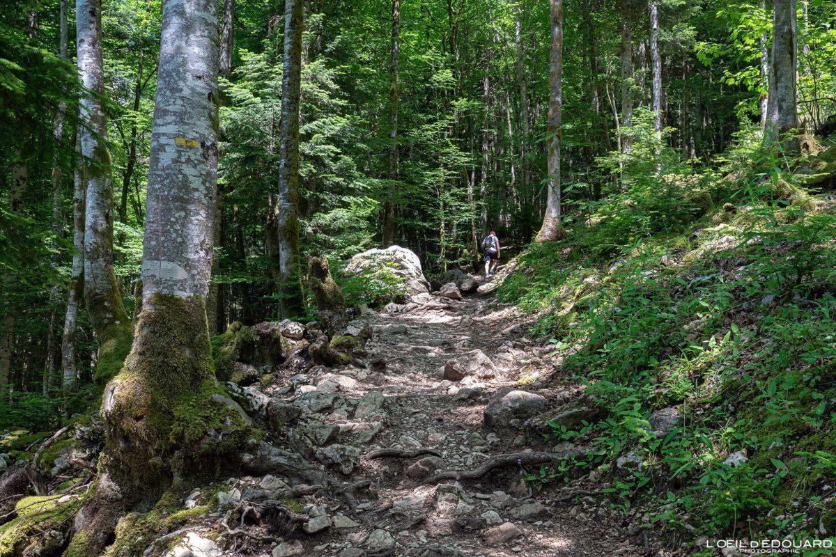 Sentier Randonnée Cirque de Saint-Même Massif de la Chartreuse Savoie Alpes France Montagne Paysage Outdoor French Alps Mountain Landscape Hike Hiking Trail