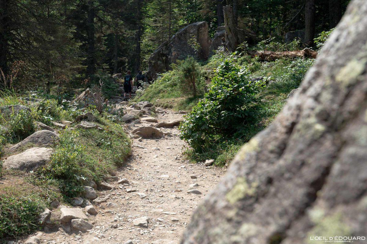 Sentier randonnée Lac de Gaube Cauterets Pyrénées France Montagne Forêt Outdoor Hiking Trail Hike Mountain Forest