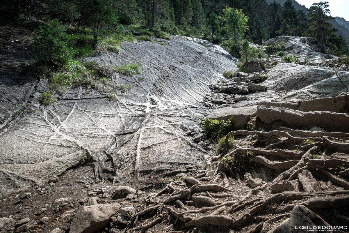Sentier randonnée Lac de Gaube Cauterets Pyrénées France Montagne Forêt lignes nervures roche granite quartz géologie Outdoor Hiking Trail Hike Geology rock