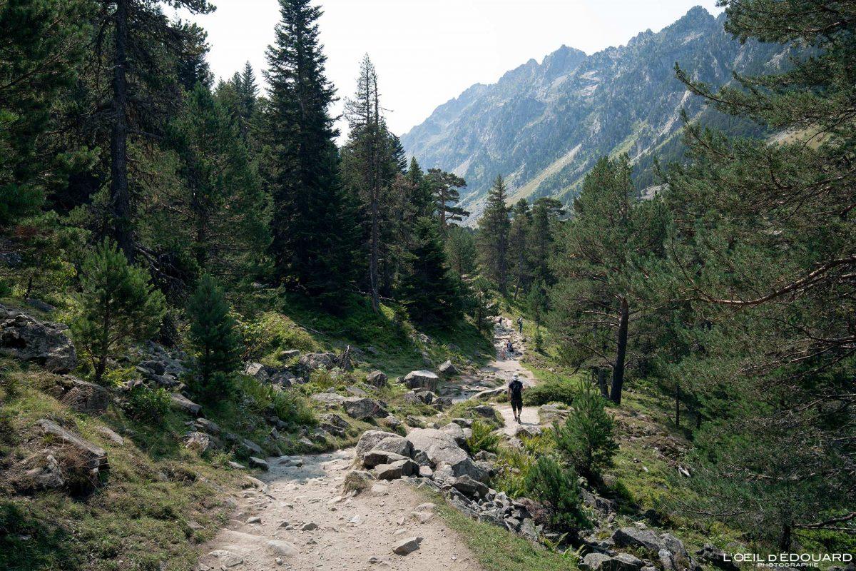 Sentier randonnée Lac de Gaube Cauterets Pyrénées France Paysage Montagne Forêt Outdoor Hiking Trail Hike Forest Mountain Landscape