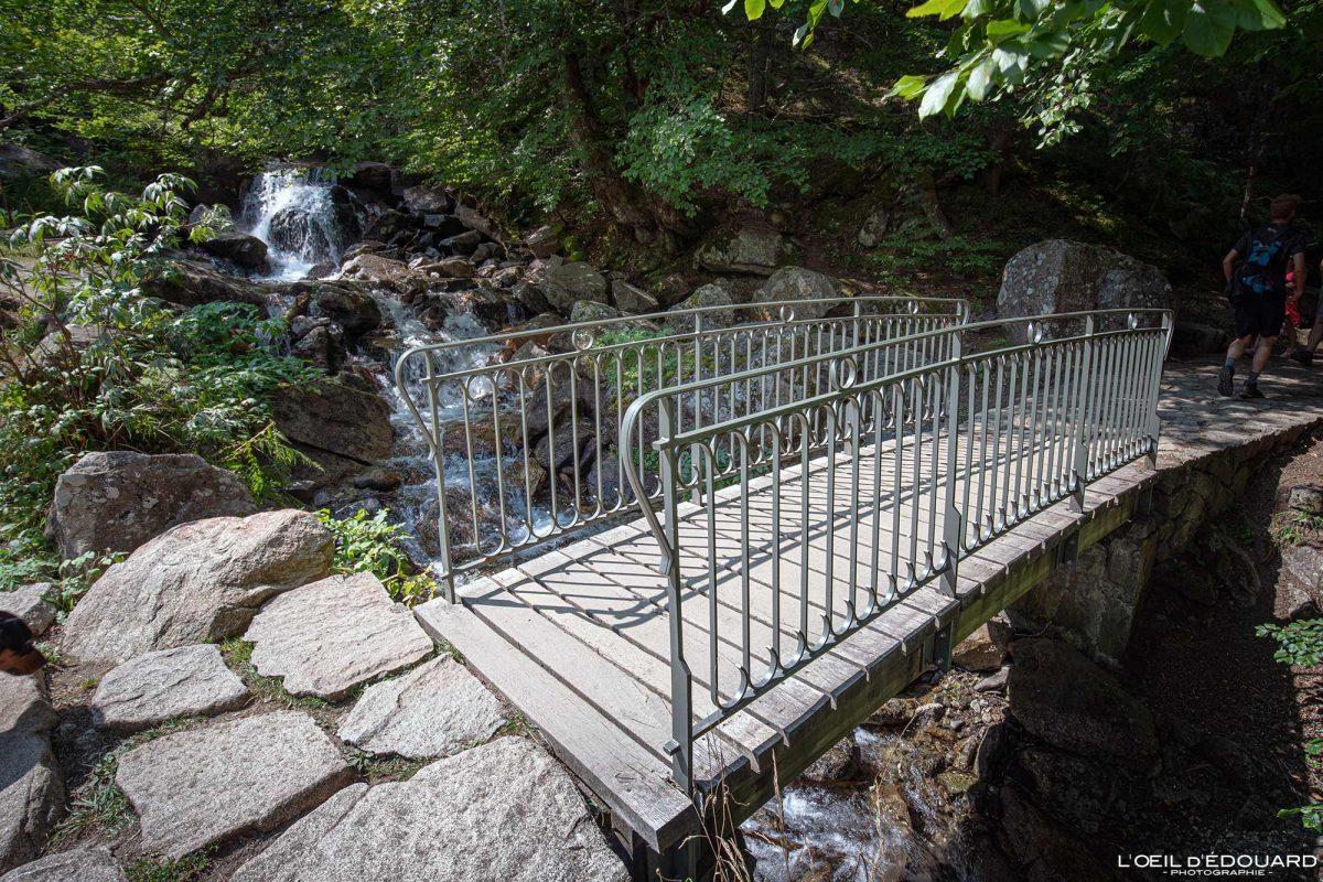 Sentier randonnée Pont d'Espagne Cauterets Pyrénées France Outdoor Hiking Trail Hike Forest Landscape Bridge