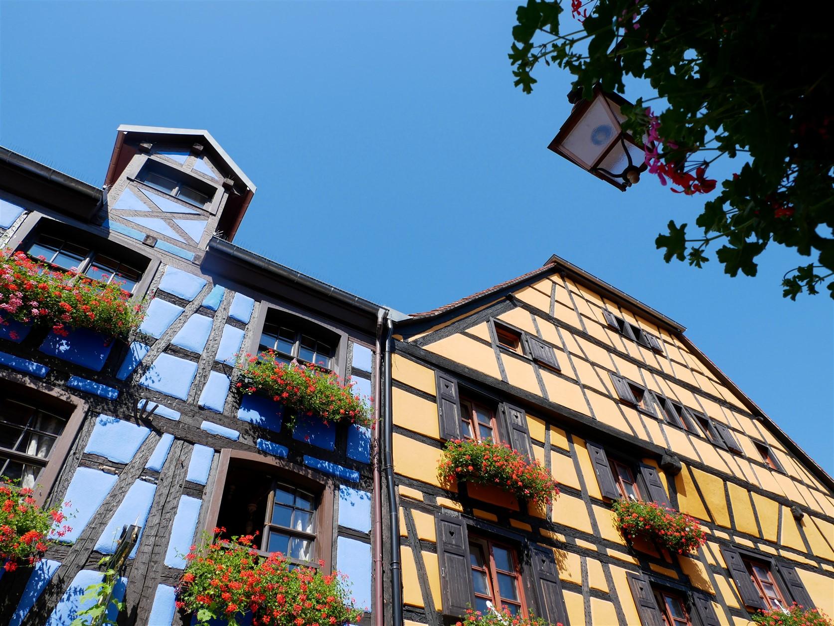 Maisons colorées à colombages à Riquewihr