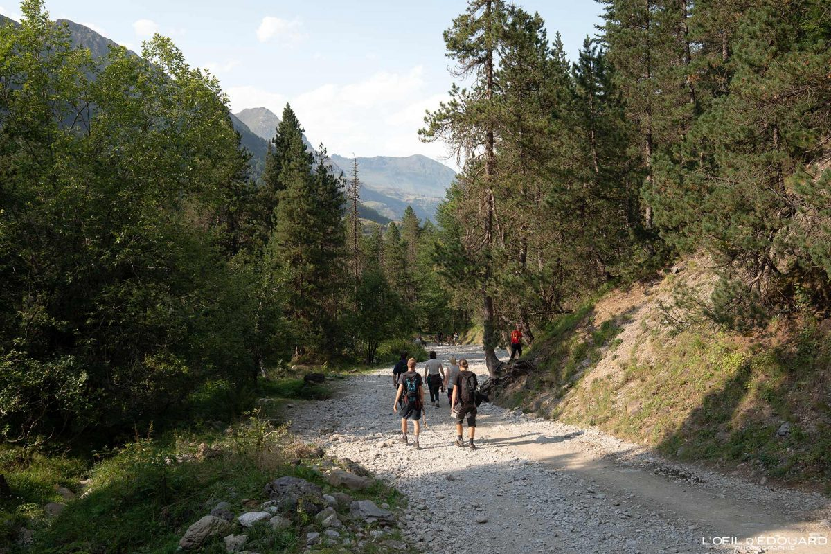 Chemin de randonnée Gavarnie Pyrénées France Paysage Montagne Outdoor Hiking Mountain Forest