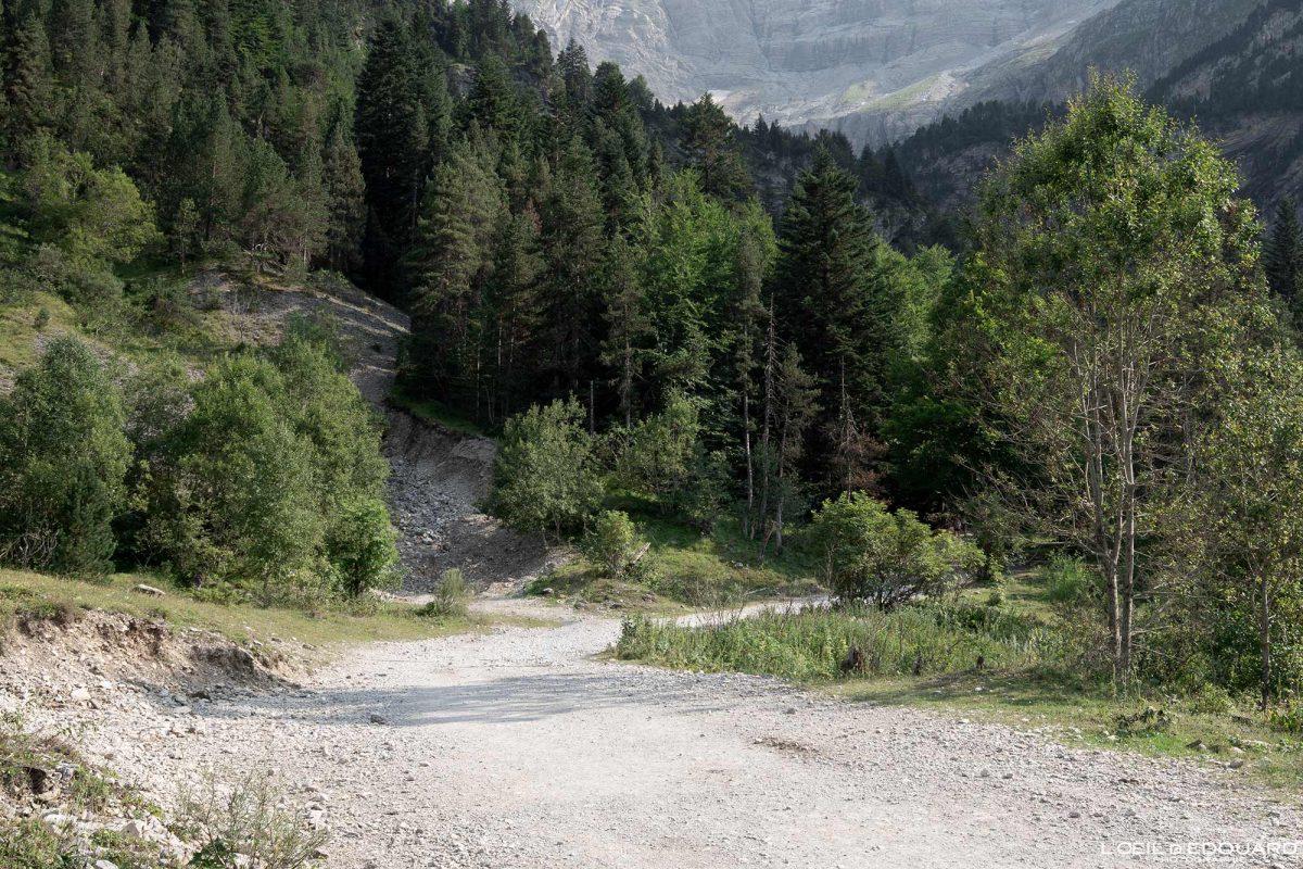 Chemin de randonnée au Cirque de Gavarnie Pyrénées France Paysage Montagne Outdoor Hiking Mountain Forest